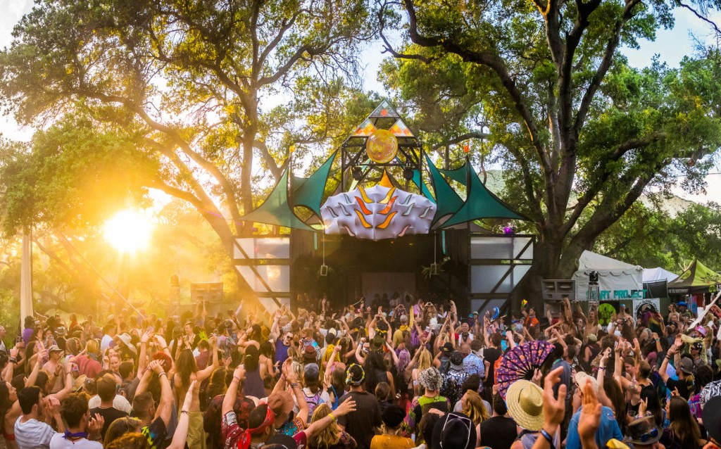 bedrijfsfeest festival vibes